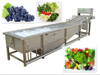 Hot Sale Commercial Vegetable Washer