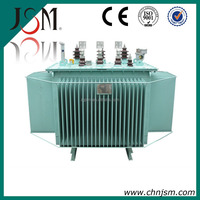 11 KV 1000 KVA Oil Immersed Distribution Transformer