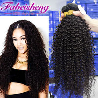 excellent hair Wigs For Black Women Malaysian Human Hairy Curly Full Lace Wigs