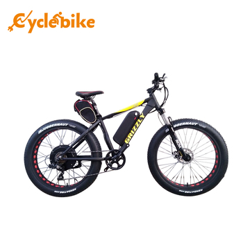 Hot selling fat tire e bike made in China