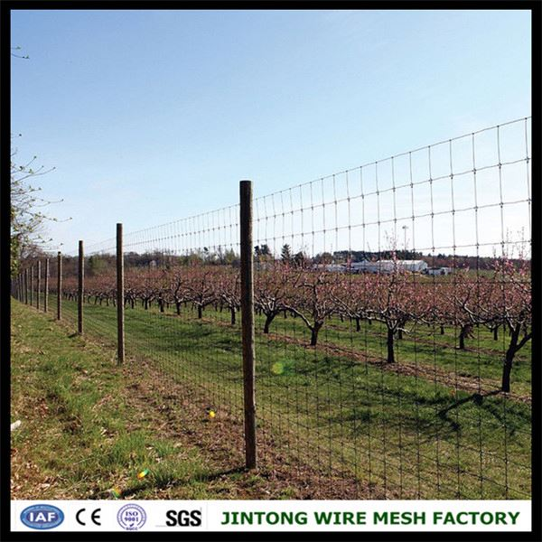 Galvanized Fixed Knot Woven Wire Deer Fence, Galvanized Fixed Knot ...