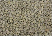 Green Arabica Coffee Beans from Ethiopia