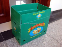 Food grade plastic pp fruit storage box packaging box with ISO FDA certificate