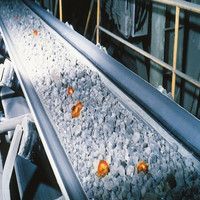 polyester reinforced heat and fire resistant conveyor belts balance transport