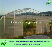 10m plastic Sheeting Greenhouses For Sell