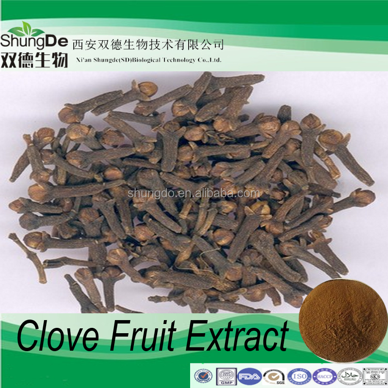 High quality Syzygium aromaticum extract of 99% Eugenol oil