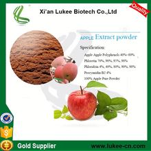 Factory Supply Health Care Supplement Organic Apple Cider Vinegar Powder/Apple Polyphenol Extract/ Apple Extract Procyanidin B2