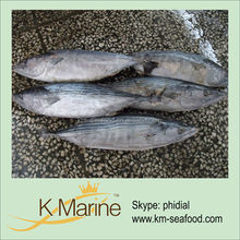 2015 Tuna Factory Supply Raw Tuna Fish Processing