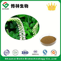 Natural Actaea Racemosa Extract Powder Black Cohosh Extract for Women's Health