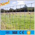 Galvanized 0.8m to 2.0m tightlock or hinge joint farm fencing wire mesh