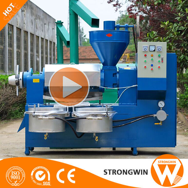2017 New Screw Oil Expeller machine Cold Press Small Oil Expeller Price