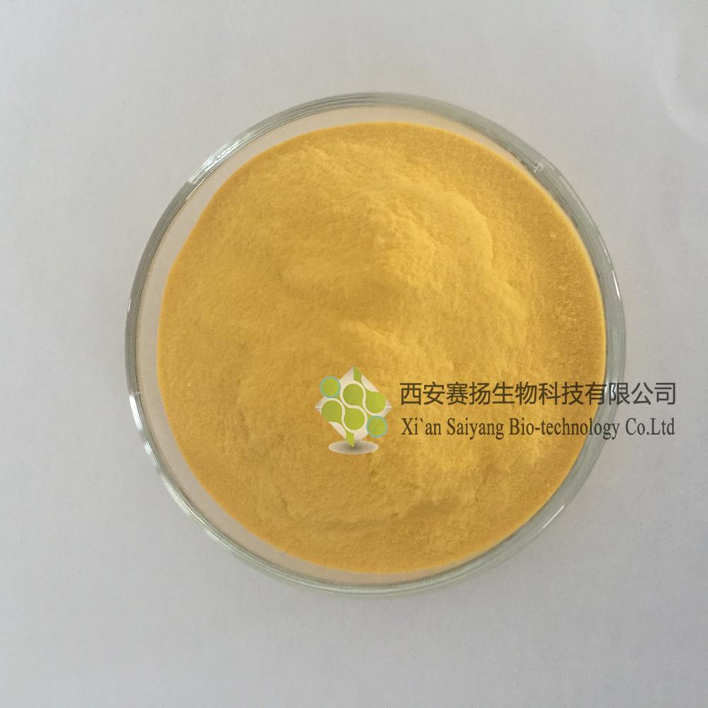 Water Soluble Mango Juice Powder Wholesale Organic Mango Juice Powder In Bulk