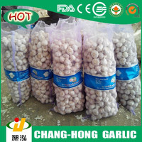 [Hot Sale]Quality agriculture wholesale china natural garlic offer