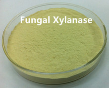 Fungal Xylanase as Flour Improver CAS No. 9025-57-4