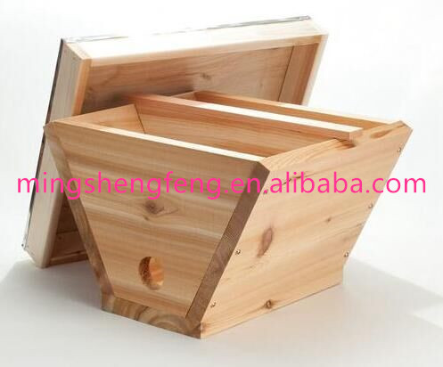 High quality new type professional queen rearing beehive with 4 frames for sale