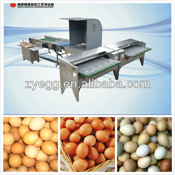 egg grader/sorting/poultry farm egg machine
