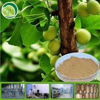 Ginkgo biloba extract 24:6% water soluble 5%