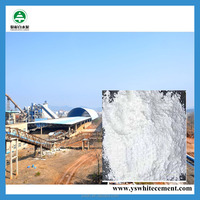 High quality 52.5 porland cement CIF price