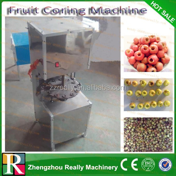 date/jujube/cherry/olive/plum/apricot pitter /seed removing machine