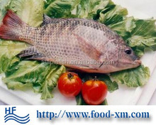 Frozen Tilapia Factory production