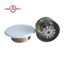 Screw Type Concealed Sprinkler Head With Cover