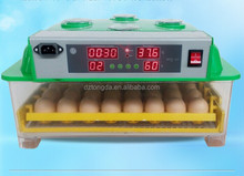 High Hatching Rate Best Mini Parrot Egg Incubator for Sale