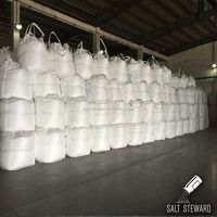 Sodium Sulphate Anhydrous 99 Manufacture In