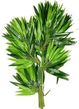 Single-branch artificial bamboo leaves