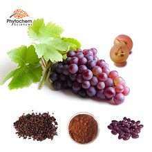 natural antioxidant foods skin whitening weight loss health benefits of grape seed extract 95% OPC