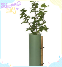 Best price for Plastic Tree Guards, Outdoor Tree Protectors, Plant Tree Shelters