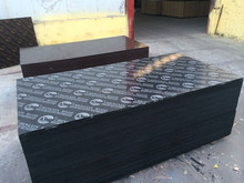 Black/brown/red film faced plywood/ marine plywood/shuttering plywood Melamine glue Eucalyptus core 1220x2440x18mm great price