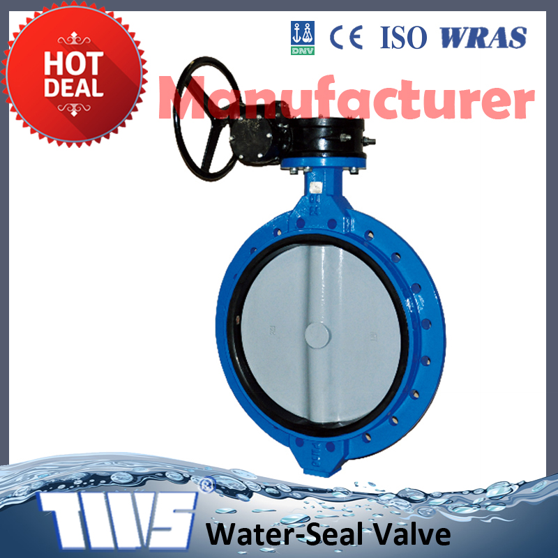 DN700~1200 PN10/16 Cast Iron Butterfly Valve for Water Works China Manufacture