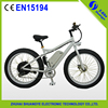 Shuangye high power electric snow bike beach bike