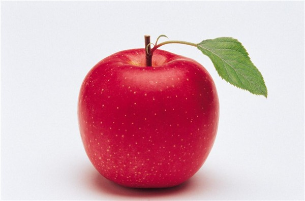 fresh and wholesale prices apple fruit