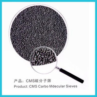 High quality China Adsorbent CMS for Nitrogen PSA
