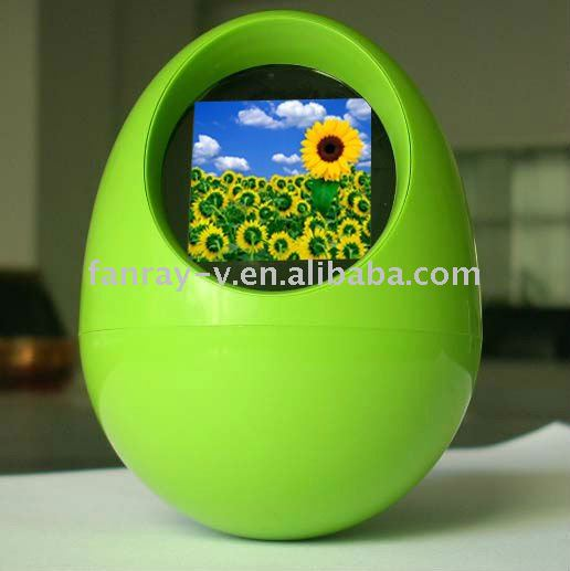 Egg shape digital photo frame - pin packing box