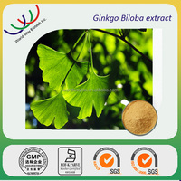 natural flavone glycosides terpene lactones Ginkgo biloba extract 24/6