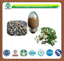 Natural Powder Camellia Seeds Extract 95% Tea Saponins