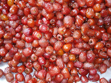 Hot Sale Low Price Dates Fruit Importers