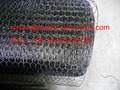 20gauge black vinyl coated poultry Wire netting