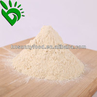 New Crop Dehydrated Onion Powder