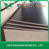 Structural plywood/shuttering plywood price/phenolic film faced plywood board