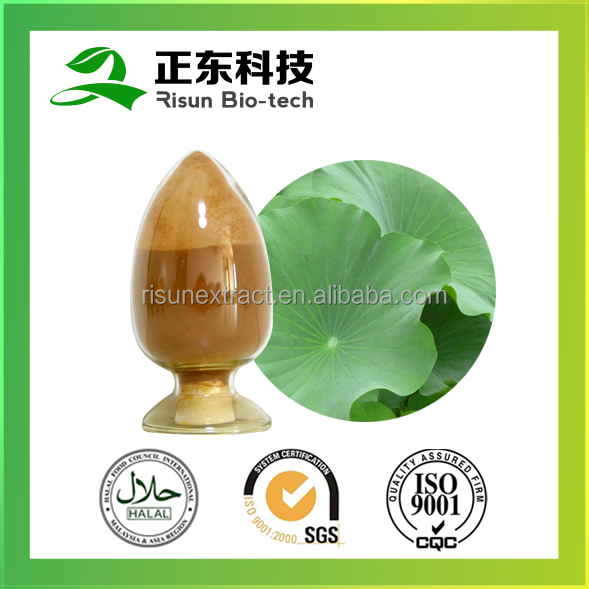Hot selling high quality 10% Nuciferine plant extract powder Lotus Leaf Extract