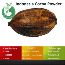 Cocoa Powder/Cocoa Powder Price/Indonesia Cocoa Powder