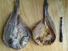 dried brown croaker fish sale