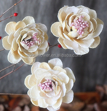 White Dried Tree Peony flowers hand-made creative peony for decoration