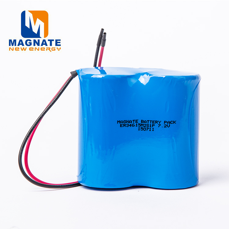3.6v lithium battery size d for medical device