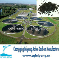Supply Coconut Shell Based Activated Carbon for Sewage Treatment
