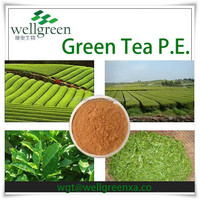 100% Nature Pure Organic high quality healthy Green Tea extract Instant Green Tea