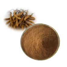 20% ~ 50% Polysaccharides Riched Cordyceps Sinensis Extract